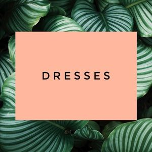 Dresses & Skirts - Great selection!